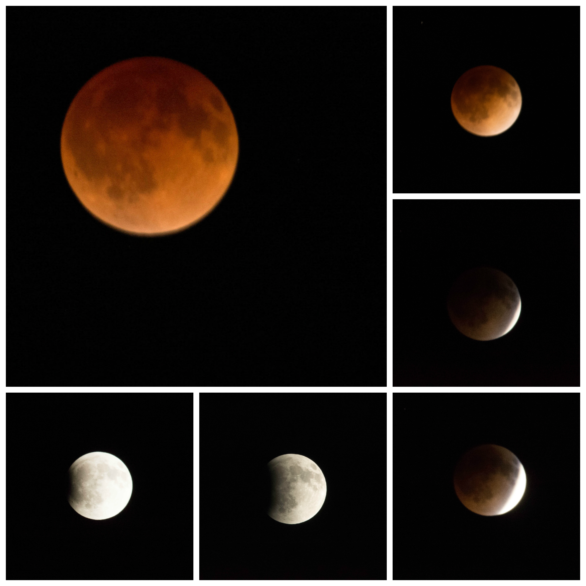 Blood Moon Collage