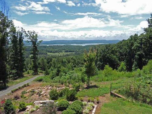 Grand Oak View