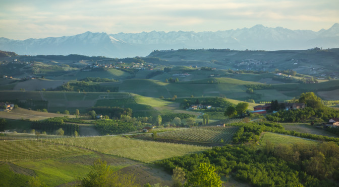 Langhe Alba countryside